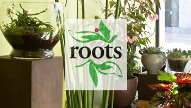 Roots on South Van Ness